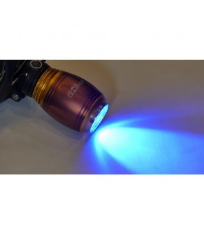 UV lukturis un galvas 5W 12V
